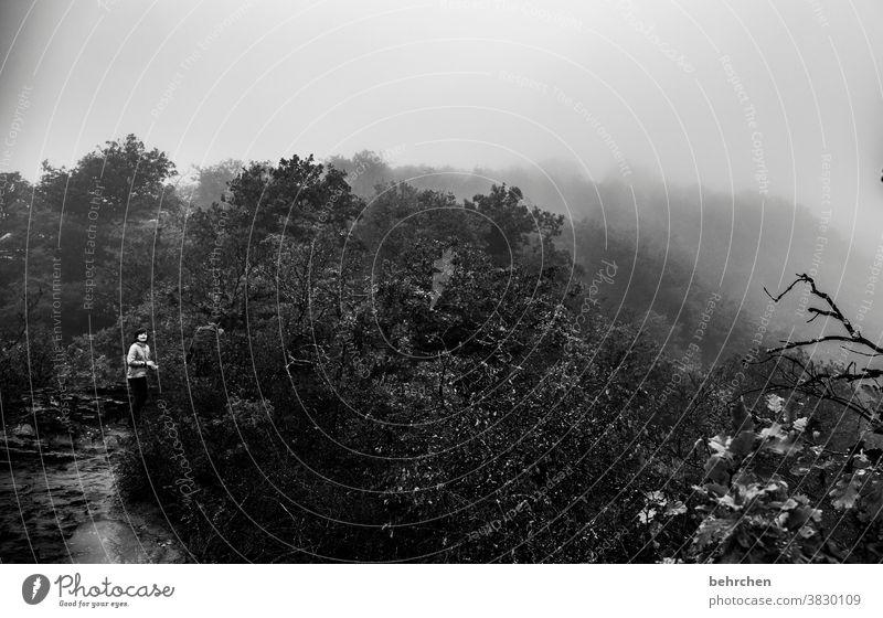in wolken gehüllt beeindruckend dunkel dramatisch Ferien & Urlaub & Reisen Wald Schwarzweißfoto wandern Natur Außenaufnahme Umwelt Wolken Himmel Freiheit Ferne