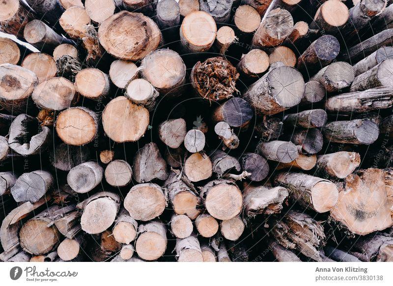 Holzstapel Baumstamm Baumstämme Brennholz Forstwirtschaft Wald Abholzung Umwelt Natur Stapel Nutzholz Außenaufnahme Brennstoff Menschenleer Farbfoto roh rund