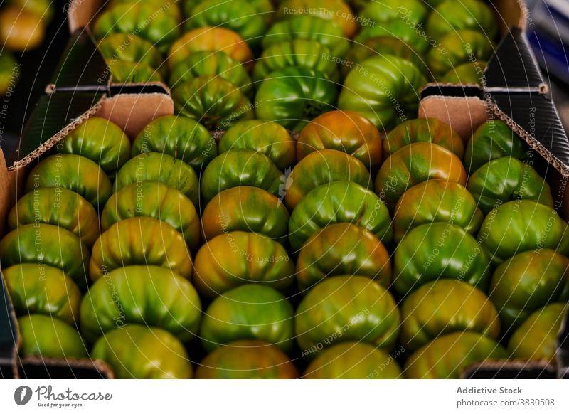Frische Tomaten in Kartons auf dem Markt grün Lebensmittelgeschäft unreif Kasten Container frisch Gemüse organisch Laden Einzelhandel lokal Gesundheit