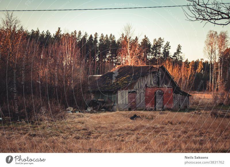 ländliche Holzhütte alte verlassene und Kiefernwälder Waldlandschaft gealtert antik Architektur Herbst Hintergrund Scheune gebrochen Gebäude Cottage Land