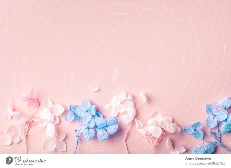 Biologisch abbaubares Konfetti aus echten Trockenblumen getrocknet Blume Pflanze umweltfreundlich geblümt Ordnung Blumenstrauß Requisiten Design natürlich Natur