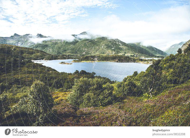 Wunderschöne wilde Landschaft mit Heidekraut, einem See und im Hintergrund einige Berge in Norwegen auf den Vesteralen Berge u. Gebirge Wildnis Gewässer wandern