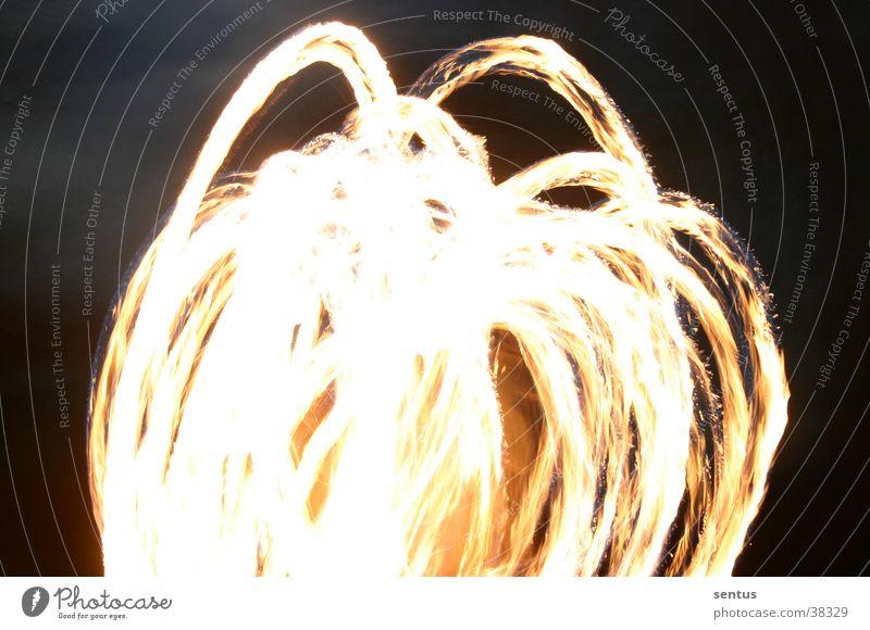 Fire-Flower Blume Nacht Freizeit & Hobby Brand Pois