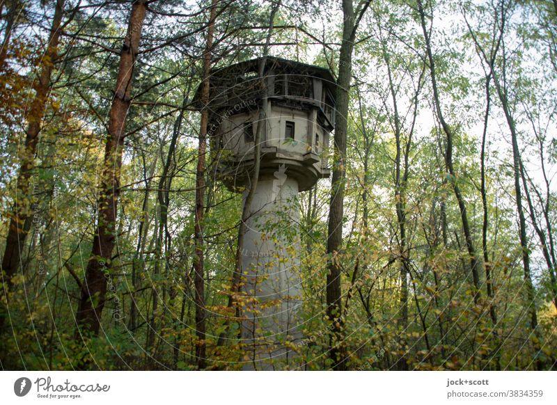 alter Wachturm mitten im Wald Natur Baum Herbst lost places Architektur Verfall Ruine Vergangenheit verfallen historisch versteckt verdeckt DDR geheim