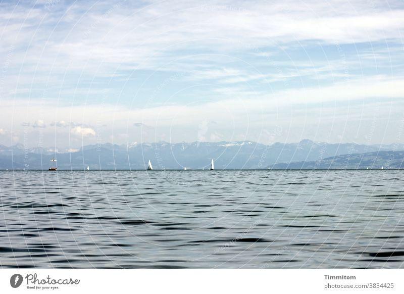 Ruhige Szenerie am Bodensee Wasser Berge u. Gebirge Himmel Wolken Schönes Wetter Segelboot Urlaubsstimmung See Landschaft blau Ferien & Urlaub & Reisen ruhig