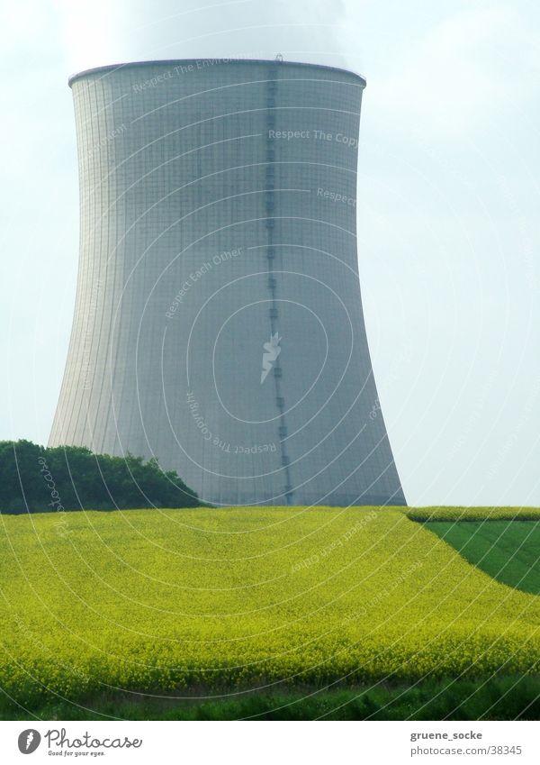 Kühlturm im Raps Frühling Industrie Stromkraftwerke Kernkraftwerk Rapsfeld