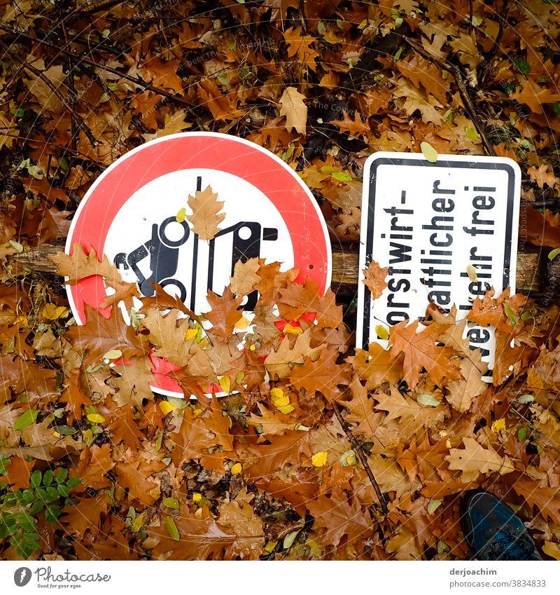 Schilder im Wald, Zwei Vekehrsschilder liegen auf dem Waldboden. Teilweise von braunen Blättern bedeckt. Schilder und Schriftzüge Linien und Formen Natur