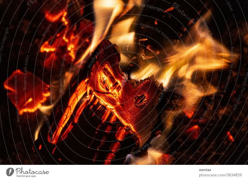 Ein Holzscheit brennt, die orangefarbene Glut strahlt Hitze aus und die Flammen leuchten gelb Feuer Holzscheite brennen Kamin Wärme Brand Umwelt heiß xenias