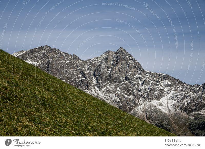 Hinter der grünen Bergwiese ragen die Alpen empor. Gebirge Italien Südtirol Gipfel Landschaft Berge u. Gebirge Himmel wandern Klettern Felsen Bergsteigen