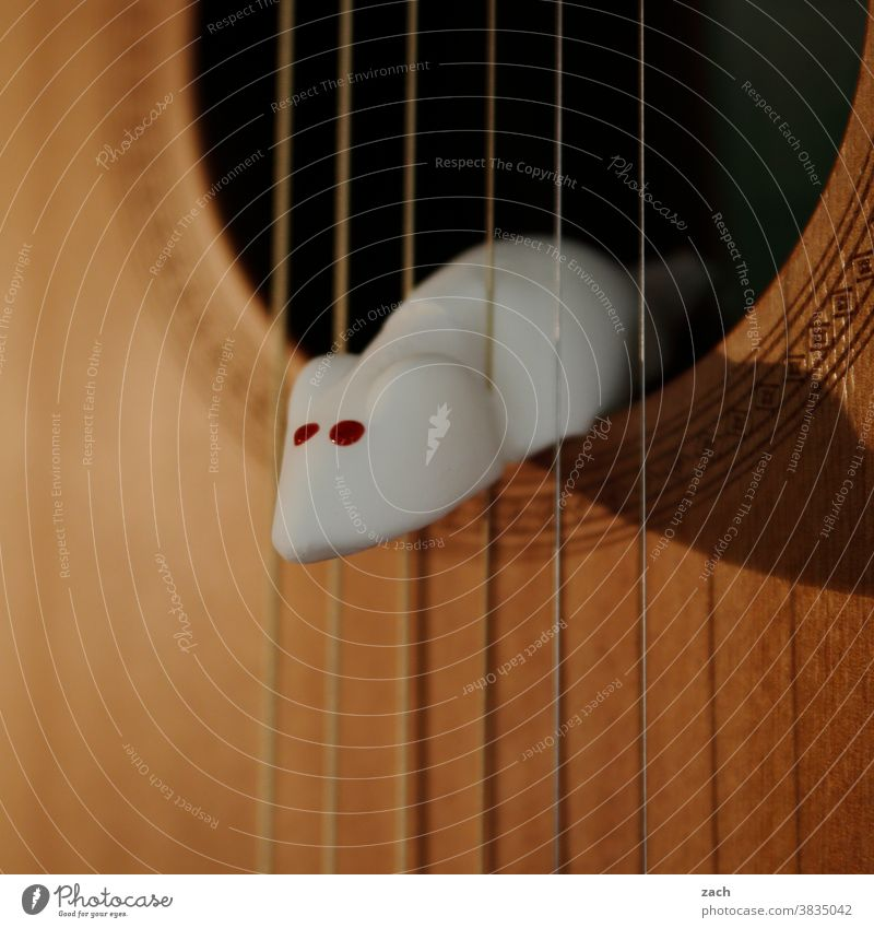 Jimi Hendrix Maus Mäuse Schädlinge Schädlingsbekämpfung Süßwaren Süßigkeiten Gummitier Gitarre Musik Gitarrenspieler Gitarrensaite Musiker Kunst musikalisch