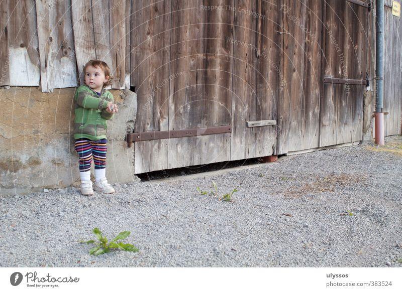 Im Spiel Kleinkind Kindheit 1-3 Jahre Zufriedenheit erleben unschuldig Farbfoto Außenaufnahme Tag Zentralperspektive Wegsehen