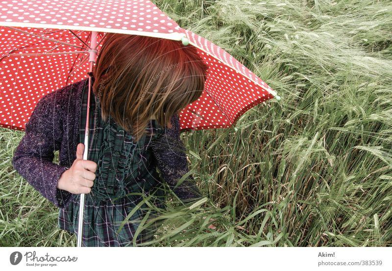 Der Fänger im Roggen Mensch Kind grün weiß Sommer rot Mädchen feminin Spielen Feld Kindheit Punkt Suche streichen violett Sehnsucht