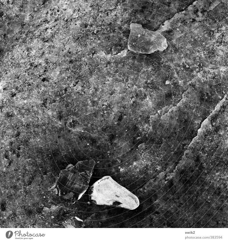 Lapides Stein liegen dunkel authentisch fest klein nah unten hart Mineralien durchsichtig Schwarzweißfoto Außenaufnahme Nahaufnahme Detailaufnahme