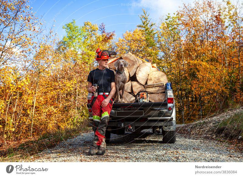 Mann und Weimaraner Jagdhund machen eine Pause von der Arbeit im Wald Ladung Bruchholz heizen Vorrat spiel zweisam Gemeinsam beste Freunde spaß lustig kurios