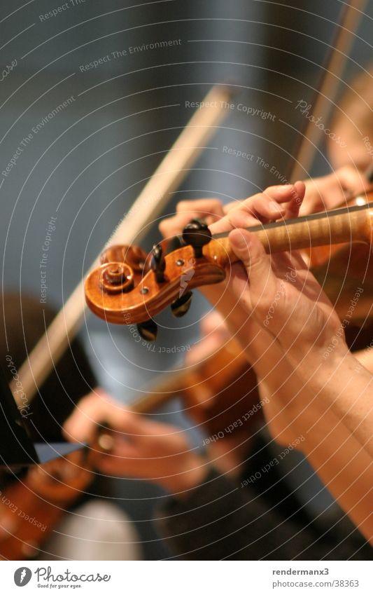 Geige im Orchester Musik für die Sinne Hand schwarz Gefühle Bewegung Holz Glück Menschengruppe Kopf braun Freizeit & Hobby Musik gold Fröhlichkeit Finger weich Musikinstrument