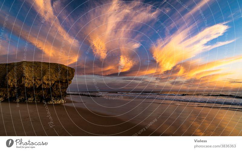 Wolken Schauspiel an der Küste der Algarve Ferien & Urlaub & Reisen Tourismus Ferne Sommer Natur Wellen Meer Sonne Sommerurlaub Sonnenlicht Schönes Wetter