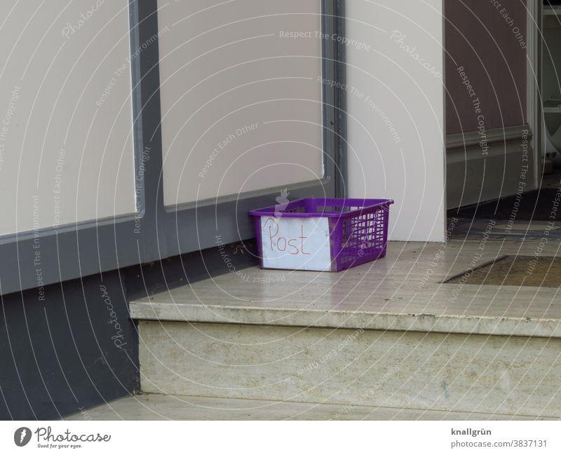 Lila Plastikkorb für Post vor einer Eingangstür Behälter u. Gefäße Hauseingang Kunststoff Treppenstufen Außenaufnahme Tag Menschenleer Farbfoto Treppenabsatz