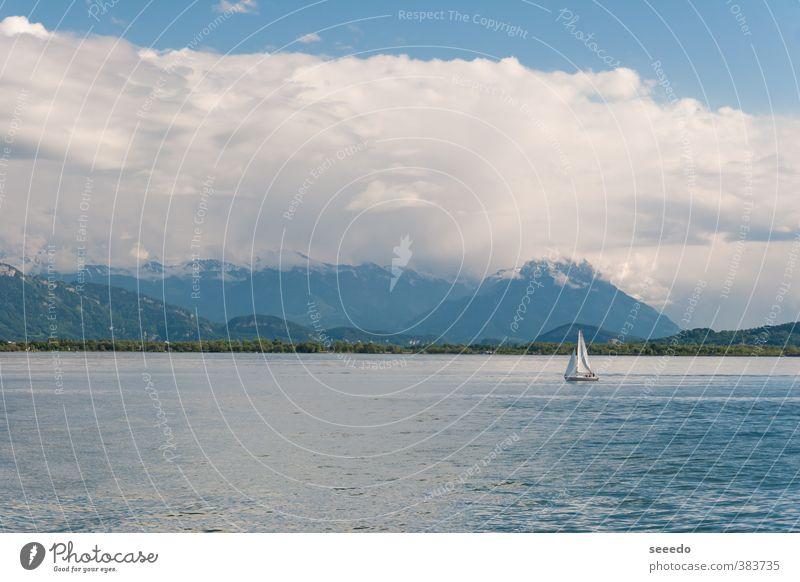 Segelboot auf dem Bodensee (Bodensee) Tourismus Ferne Freiheit Sommer Sommerurlaub Meer Wellen Landschaft Wasser Himmel Wolken Frühling Schönes Wetter Alpen