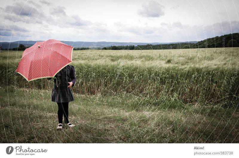 Der Fänger im Roggen II feminin Kind Mädchen 1 Mensch 3-8 Jahre Kindheit 8-13 Jahre Natur Feld Rock Schutz Regenschirm Weizenfeld Spaziergang Landschaft Ferne