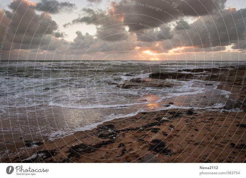 Untergang Umwelt Natur Landschaft Urelemente Erde Luft Wasser Himmel Wolken Gewitterwolken Nachthimmel Horizont Klima Küste Nordsee Ostsee Meer Sehnsucht