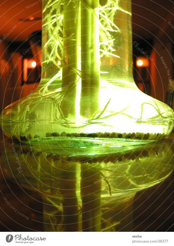schicke beleuchtete Blumenvase Vase grün Licht Reflexion & Spiegelung Glas Detailaufnahme