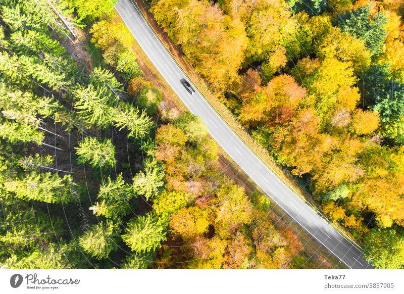 eine herbstliche Waldstraße mit einem von oben heruntergelassenen Autodach Straße von oben Auto auf einer Straße PKW schnelles Auto Straße von oben nach unten