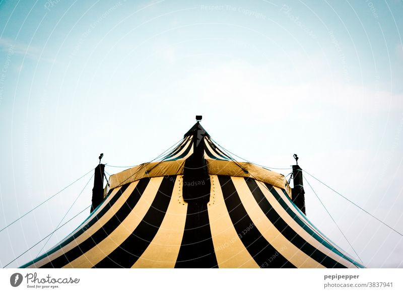 Zirkuszelt Zelt Plane Außenaufnahme Farbfoto Menschenleer Jahrmarkt Freizeit & Hobby Himmel Veranstaltung Entertainment Tag Show Kultur Dach gelb Feste & Feiern