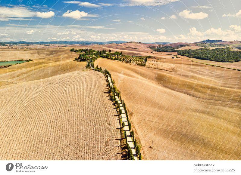 Goldene Felder der Toskana und von toskanischen Zypressen gesäumte Straße Italien Ackerbau Landschaft ländlich Ackerland weniger befahrene Straße sonnig Sommer