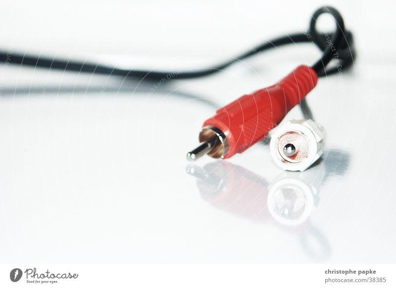 Zwei Chinch-Kabel auf spiegelnder weißer Platte. Elektronik Technik & Technologie Unterhaltungselektronik Stecker Musik audioausgang übertragung