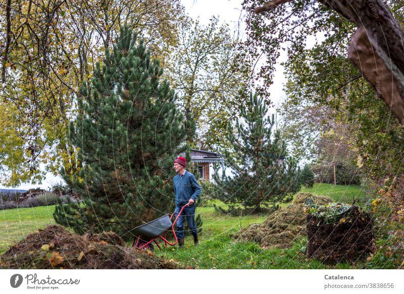 Mann mit Schubkarre  bei der Gartenarbeit im Herbst Komposthaufen Blätter Wandel& Veränderung Vegetation Pflanzen Flora Natur Gras verrotten Kiefern Wiese laub