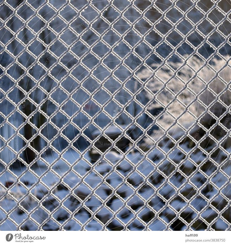 Zaun im Winter mit Raureif vom gefrorenem Nebel Maschendrahtzaun Frost Eis Schnee eis und schnee kalt weiß Eiskristall frieren Schneekristall Kristallstrukturen