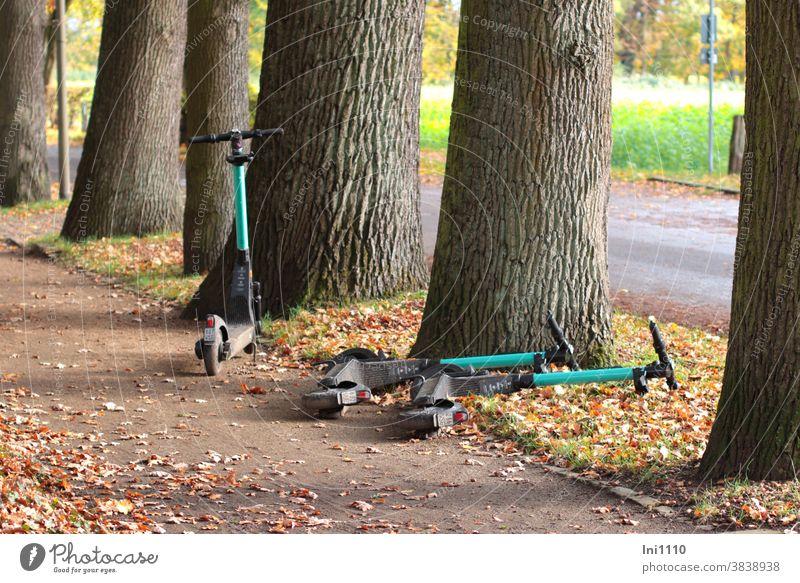 3 E-Scooter bereit für den nächsten Einsatz Roller fahren Technik & Technologie Vermietung Herbstlaub Fußgängerweg Lifestyle Botanischer Garten Gütersloh