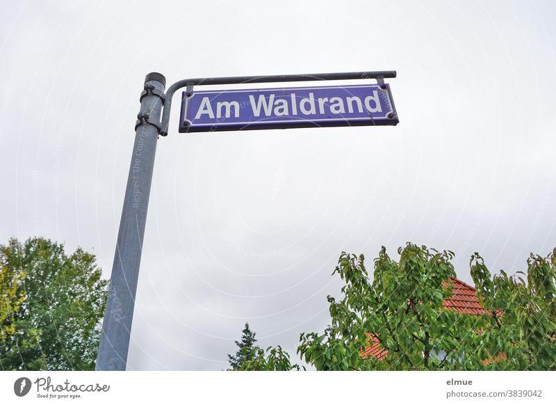"""freistehendes Straßenschild """"Am Waldrand"""" vor einem Haus und Bäumen bei trübem Wetter, aus der Froschperspektive Straßenname Schild Schilder & Markierungen"""