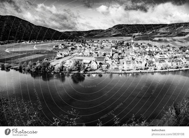 wein stadt fluss Wasser Sonnenlicht Jahreszeiten herbstlich Herbst Hunsrück Rheinland-Pfalz Flussufer Mosel (Weinbaugebiet) Moseltal Ruhe Idylle Abenteuer