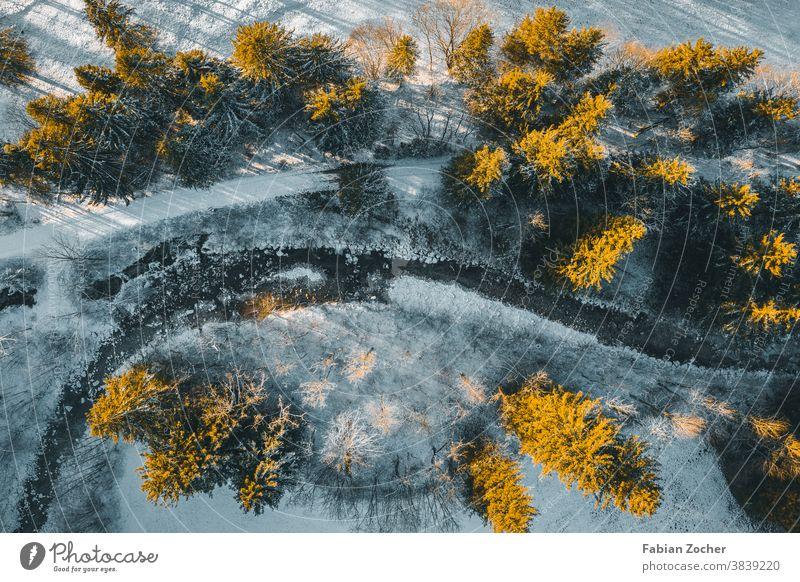 Winterwald von oben Allgäu Bayern Berge Deutschland Drohne Europa Landschaftsaufnahmen Natur Schwangau Sonnenuntergang TopDown Wald Winter 2020 Winterwonderland