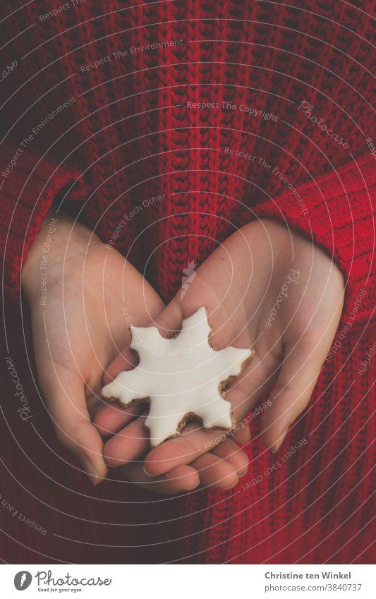 Ein weißes Weihnachtsplätzchen in Form einer Schneeflocke in den Händen einer jungen Frau im roten Strickpullover. Nahaufnahme der Hände mit dem Pullover als Hintergrund.