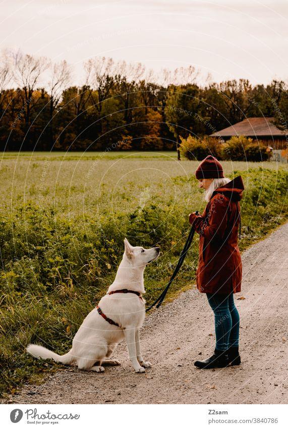 Junge Frau beim Gassi gehen mit weißem Schäferhund gassi gehen schäferhund spazieren zuneigung erziehung rot mütze herbst feld natur ländlich sitzen hundeschule