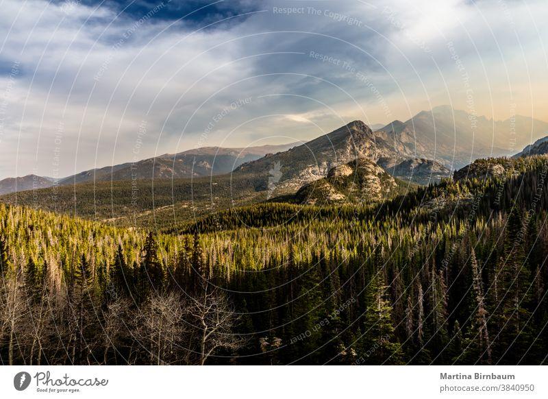 Rockyn Mountain summt mit Rauch von Waldbränden und darunter liegendem Wald Gipfel Rocky Mountain National Park Berge u. Gebirge reisen Colorado wandern Natur