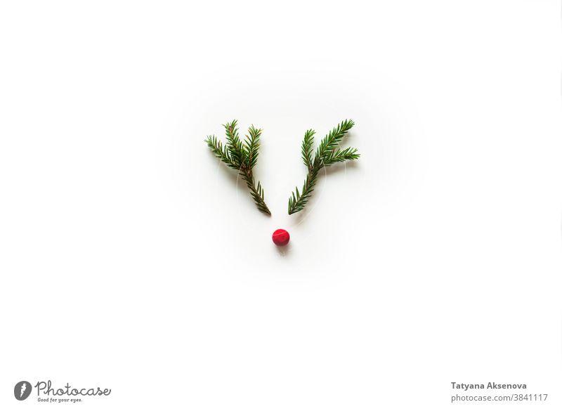 Weihnachtshirsche aus Baumzweigen Weihnachten Hirsche Hintergrund rot Dekoration & Verzierung Feiertag Winter Nase festlich rudolf Rentier Postkarte Freude