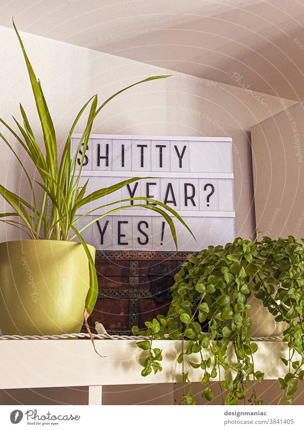 Shitty Year? Yes! Typografie Schilder & Markierungen Pflanze Schriftzeichen Wand Hinweisschild Topfpflanze gelb grün Schatz Truhe Regal Raum Grünpflanze weiß