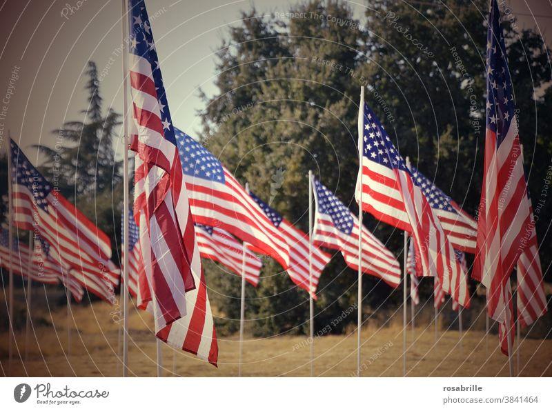 knapp daneben | die Wahl in den USA 2020 Amerika Fahne Fahnen Flagge Nationalismus viele wehen Erinnerung Patriotismus Mahnung Mahnmal Symbol Banner Sterne