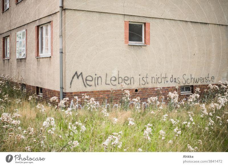Graffiti-Lebensweisheit an alter Hausfassade lebensweisheit hausfassade Gebäude Fenster Geschichte Außenaufnahme Stadt schwer tagging sozial Botschaft Verfall
