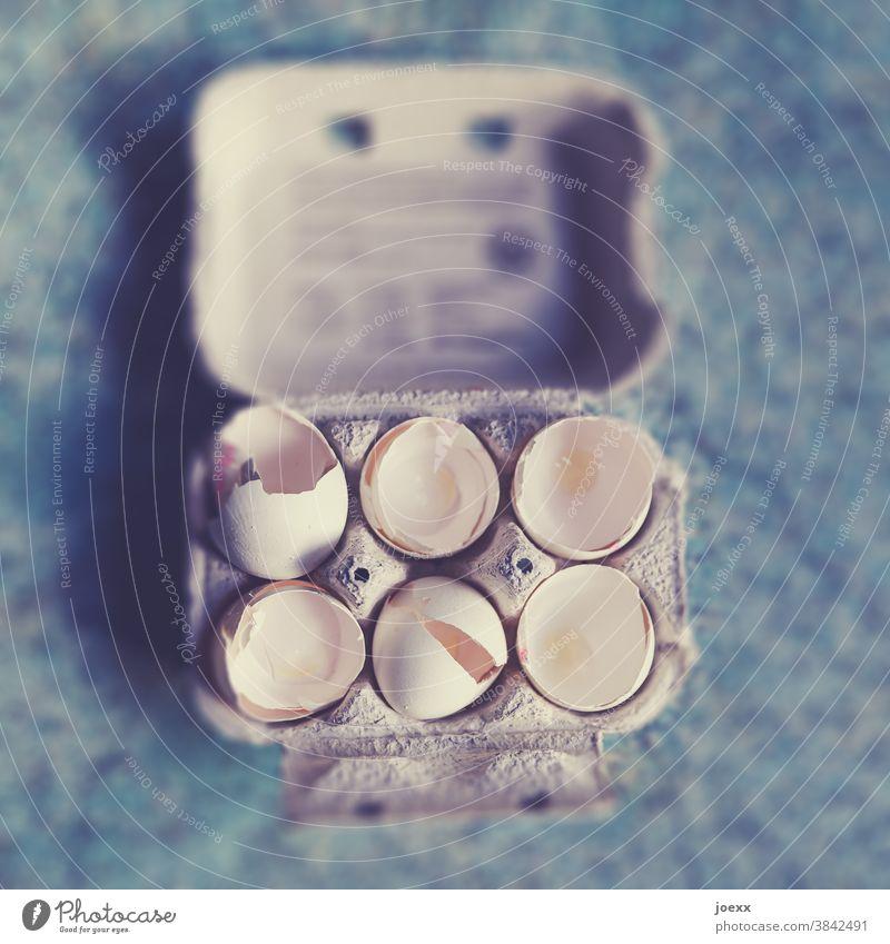 Eierkarton mit leeren Eierschalen, schwache Schärfentiefe Schale Lebensmittel Ostern Farbfoto Innenaufnahme Feste & Feiern backen kochen mehrfarbig Ernährung