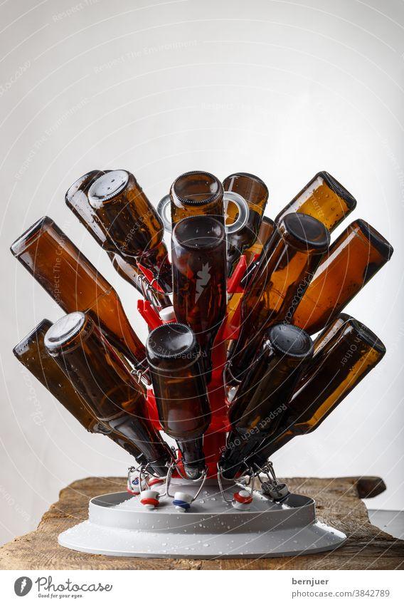 Trocknen gewaschener Bierflaschen Waschen Ständer Flaschenständer Trocken Stand Brauen braun Erfrischung Glas Getränk weiß transparent brauen Nahaufnahme