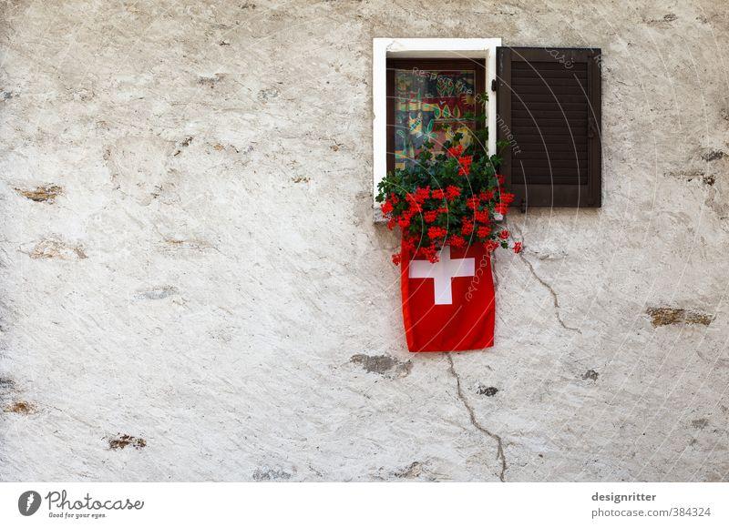 raushängen lassen Pflanze rot Blume Haus Fenster Wand Mauer Architektur Gebäude offen Häusliches Leben Warmherzigkeit Sicherheit Schutz Hütte Bauwerk
