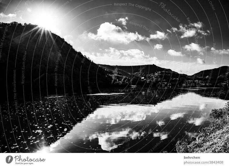 spiegel melancholisch melancholie beeindruckend dunkel dramatisch Ferien & Urlaub & Reisen Wald Schwarzweißfoto wandern Natur Außenaufnahme Umwelt Wolken Himmel