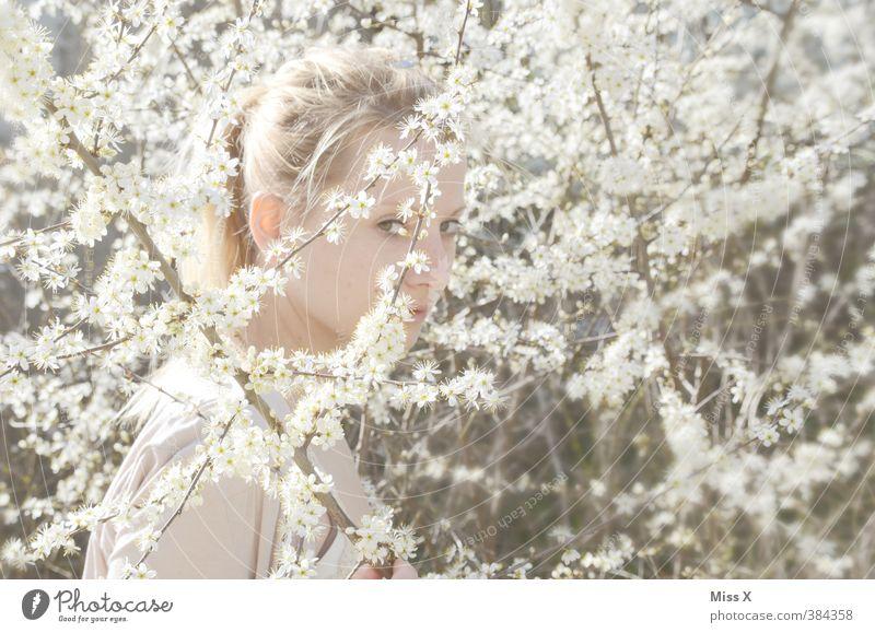 Versteckt im Blütenmeer Mensch Jugendliche schön weiß Junge Frau Erwachsene 18-30 Jahre feminin Gefühle Frühling hell Stimmung blond Sträucher Hochzeit