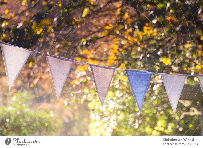 Bunte Wimpelkette vor herbstlich gefärbten Bäumen und Sträuchern an einem sonnigen Herbsttag mit tiefstehender Sonne und Lichtreflexen Herbstfärbung Herbstlaub