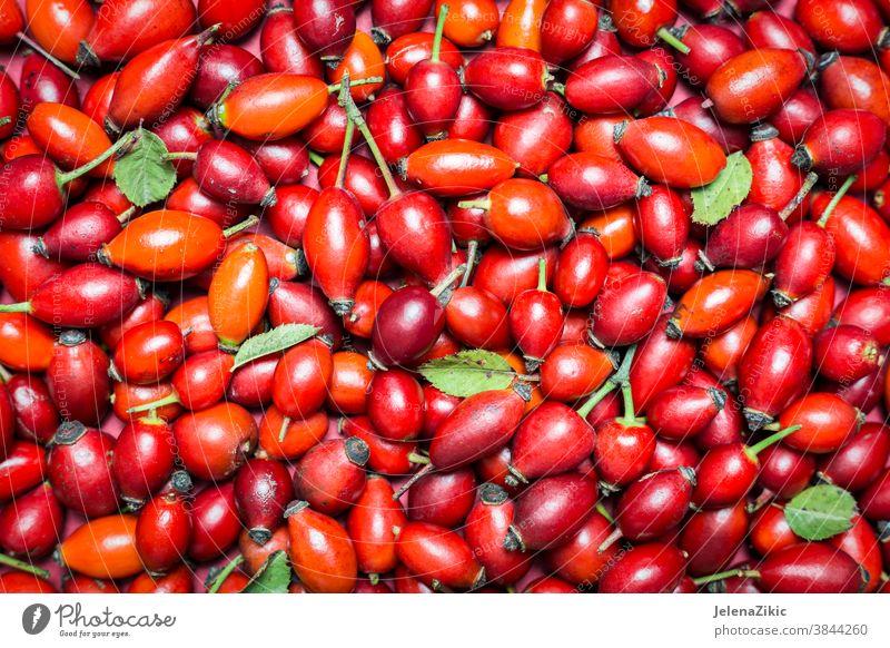 Hagebuttenfrüchte Hintergrund Gesundheit Widerstandskraft Frucht Wildrosen Alternativmedizin Beeren Beerenfrucht Kräutertee Kräutermedizin Tasse Tee Roséwein