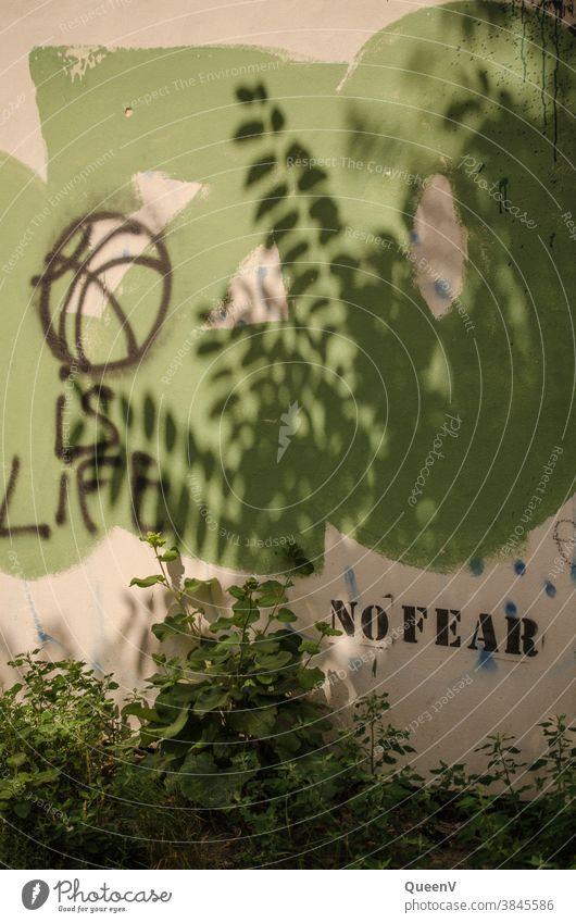 Wand mit Graffiti Straßenkunst Angst keine Angst Schatten Sommer grün Stadtleben Leben grün und weiß weiß und grün Lifestyle Stadtteil stencil Text